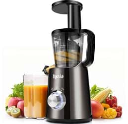 Argus Le Masticating Juicer
