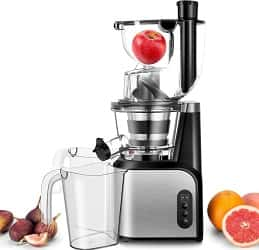 TOBOX Cold Press Juicer